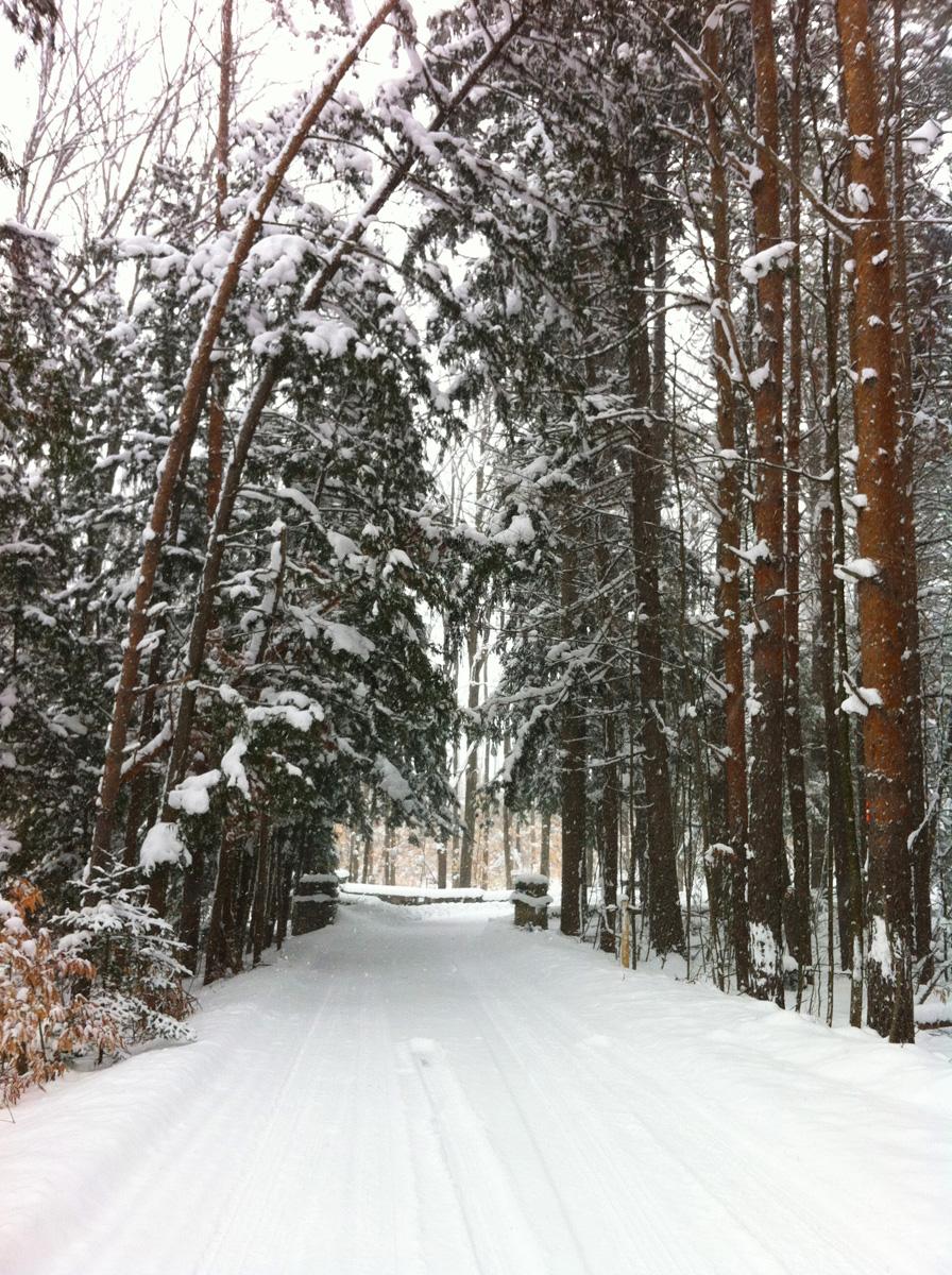 TimbersEntrance